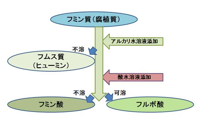 フルボ酸の分離