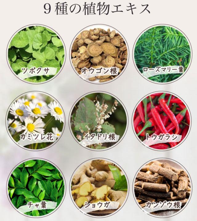 ヘアリシェ炭酸シャンプーに配合されている9種類の植物エキス