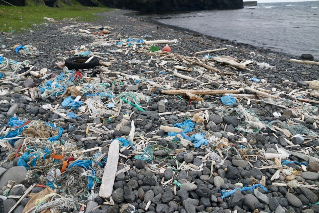 海岸に打ち寄せられたプラゴミ